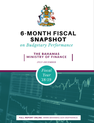 6 Month Fiscal Snap Shot 18/19 - Organization for Responsible Governance
