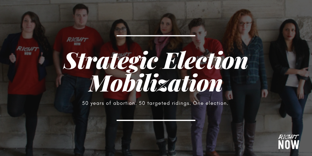 Strategic_Election_Mobilization.png