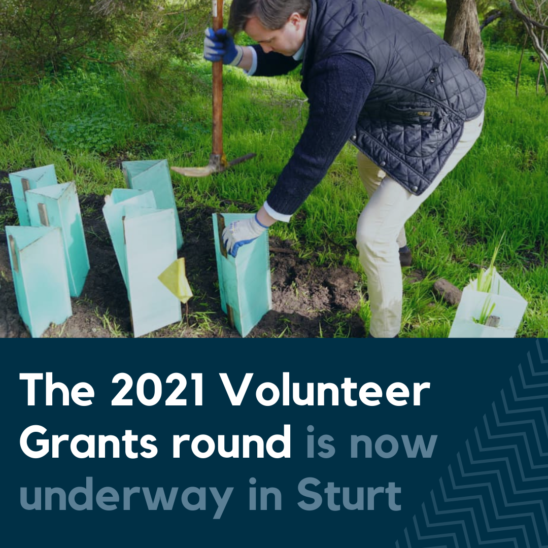 Volunteer Grants Now Available for Community Organisations