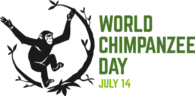 chimp_day.png
