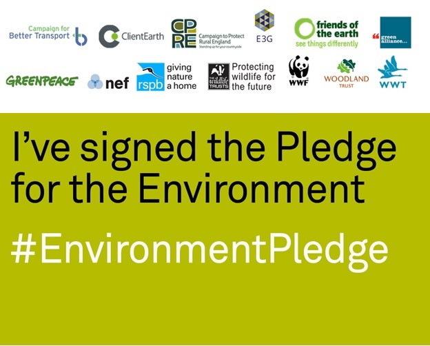 Environment_Pledge.jpg