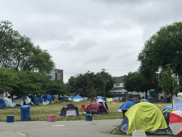 Tents line the edges of Oppenheimer park