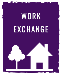 Purple-Icons-Work_Exchange.png