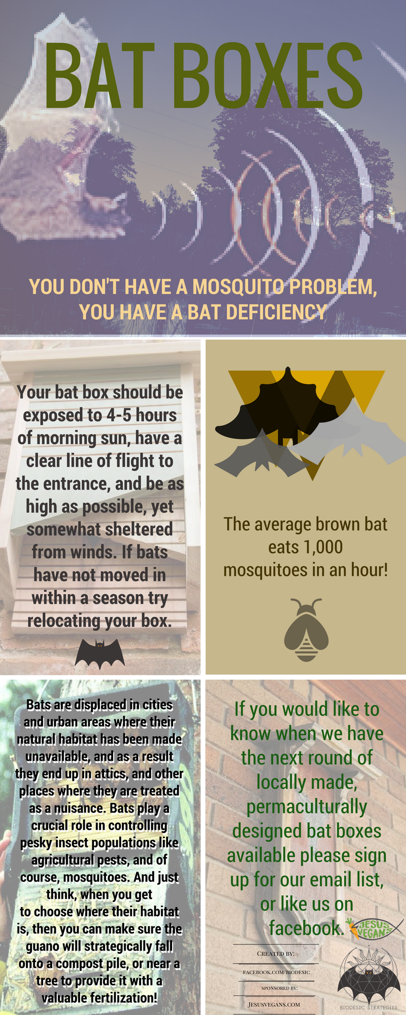 Bat_boxes.png