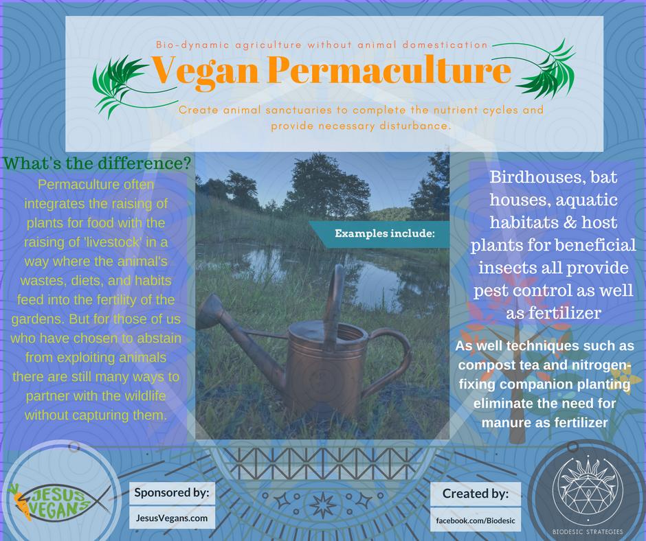 Vegan_Permaculture_(1).png