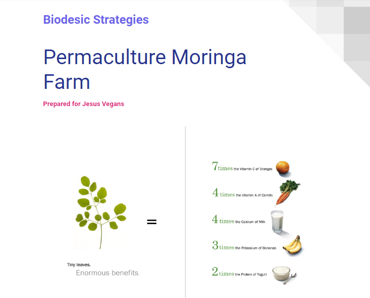 Permaculture_Moringa_farm_Graphic.png