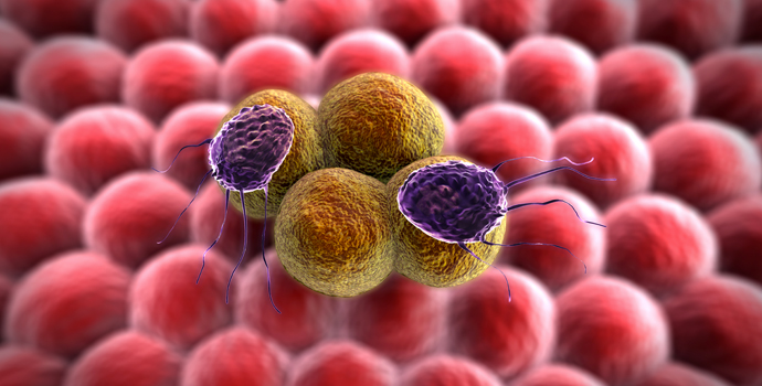 Cellules_cancer.jpg