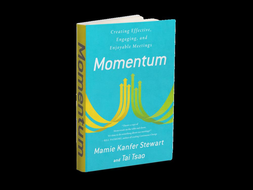 momentum_kanfer_stewart_tsao.png