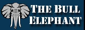 bull-elephant-logo.png