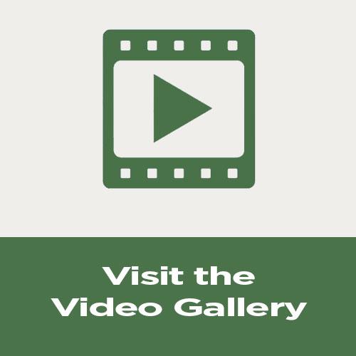 final-video-gallery.jpg