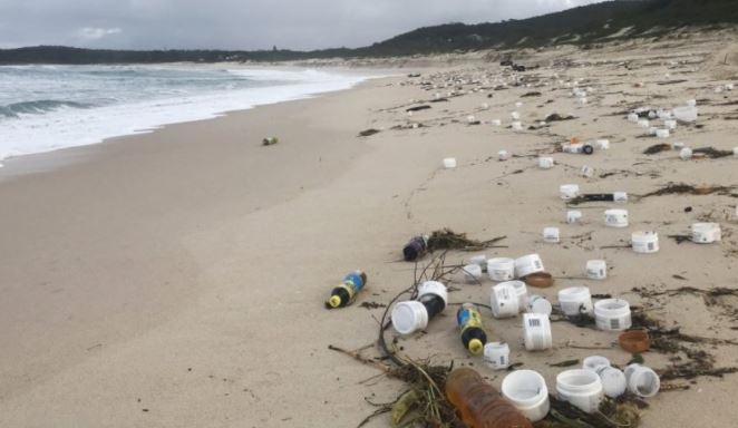 NSW Government must ensure immediate clean up of deadly marine debris lost at sea and washing up on NSW beaches
