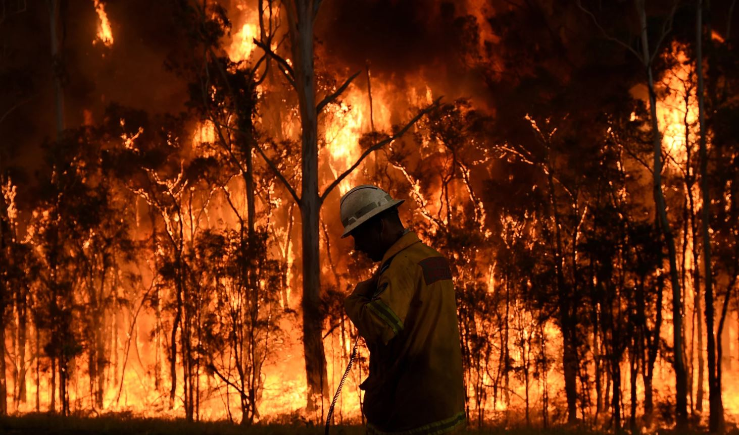 State Government fiddles on climate action while NSW burns