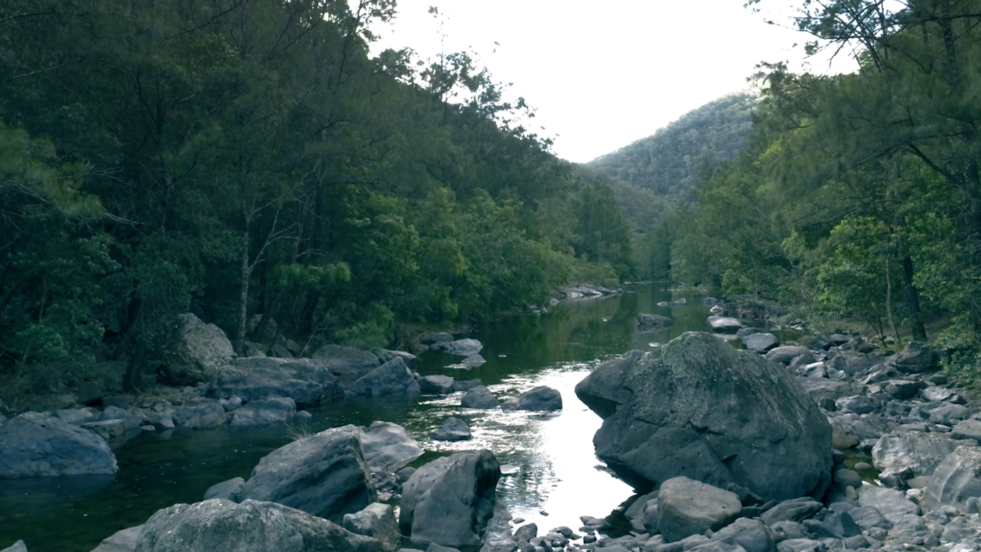 NSW Govt introduces law to allow flooding of World Heritage-listed Blue Mountains National Park  - Justin Field