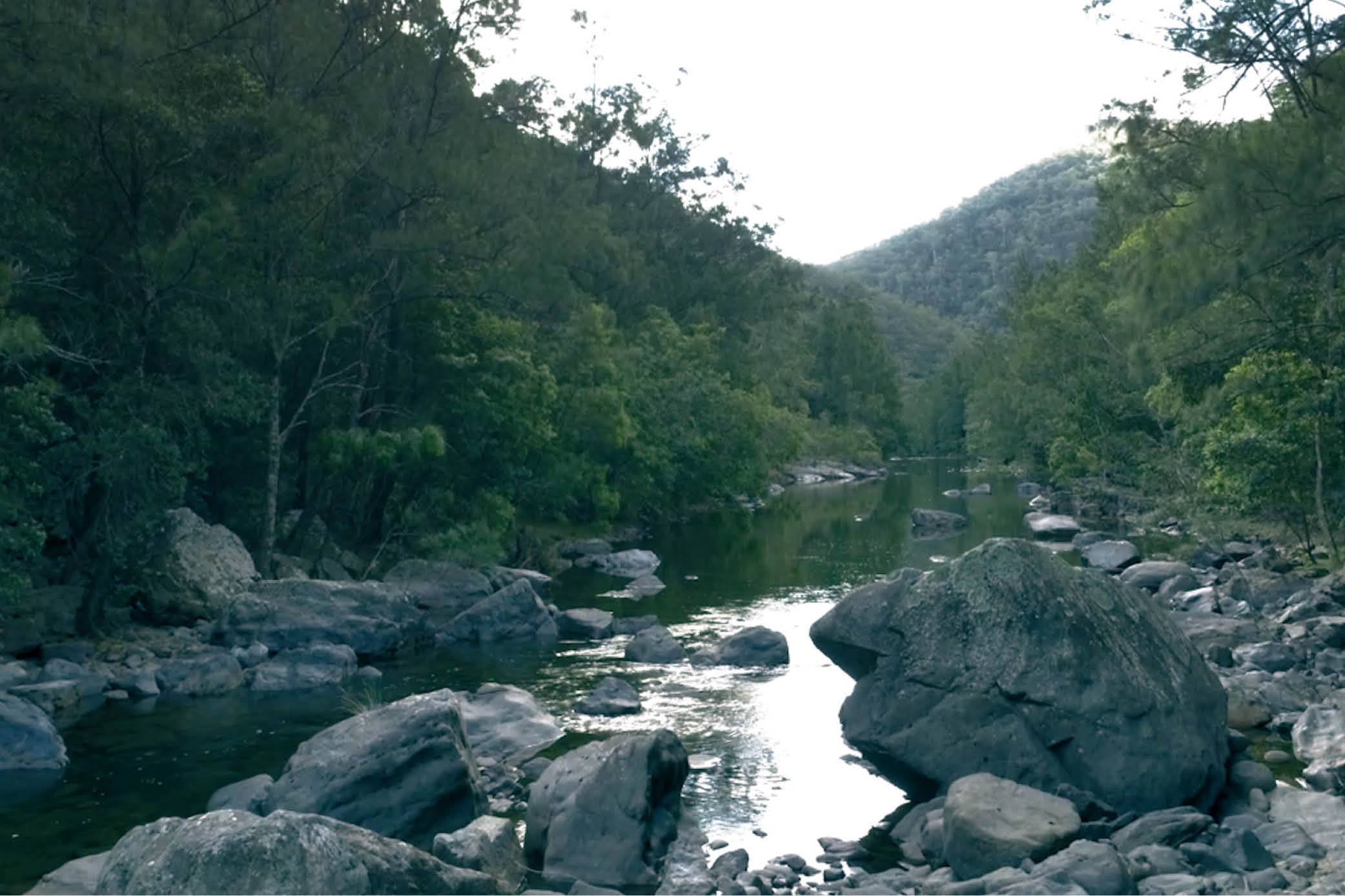 Greens to move for extended inquiry into flooding of World Heritage Blue Mountains National Park