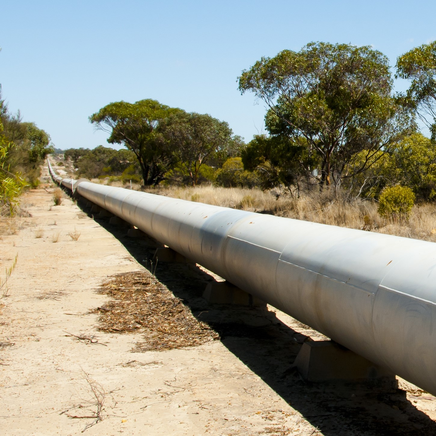 Government again break faith with Broken Hill community - refuse to release pipeline business case - Justin Field