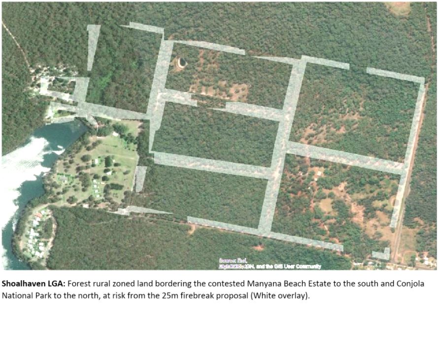 New 25m land clearing rule threatens thousands of hectares of Shoalhaven bushland