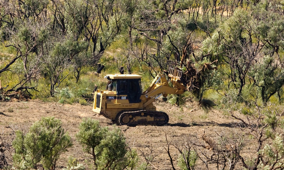 Call for South Coast MPs to reject carte blanche rural boundary clearing code and back bushfire inquiry recommendations