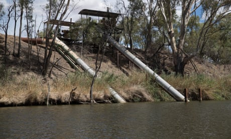 Independent MP calls for rule breaking irrigators to be issued no pump notice after massive non-compliance confirmed