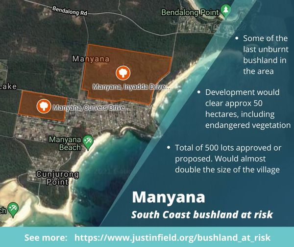 Call for moratorium on bushland clearing for urban development on the South Coast