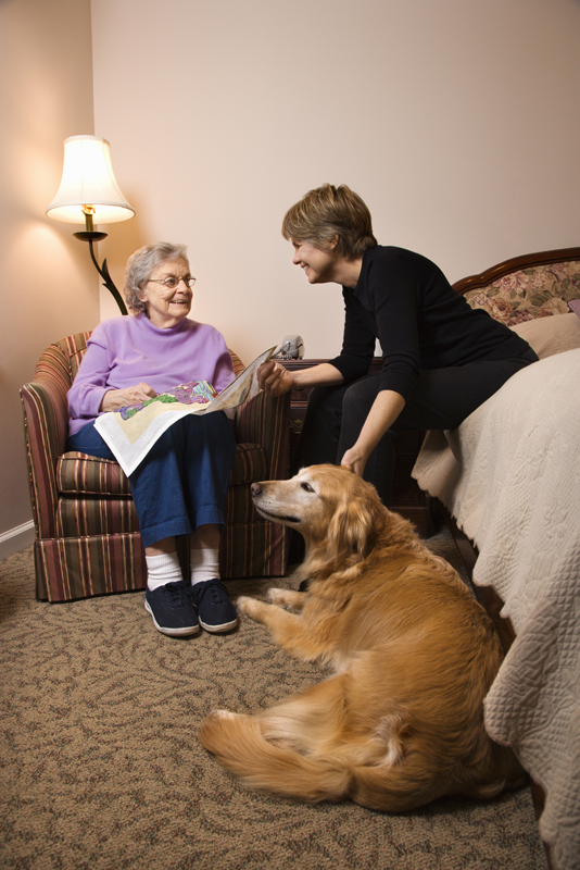 dogs_and_the_elderly_support.jpg