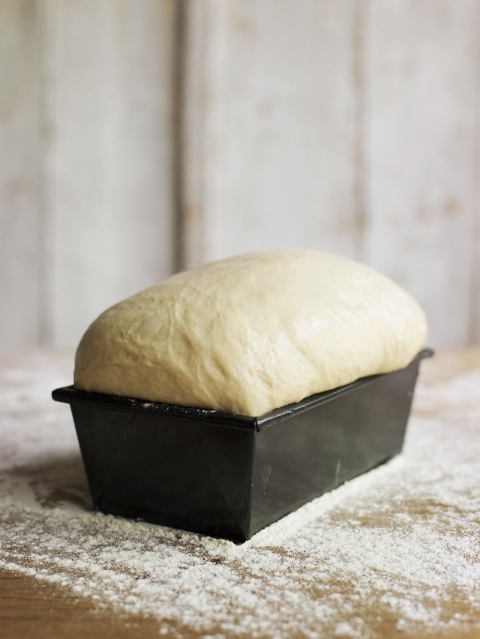 pets-bread-dough.jpg