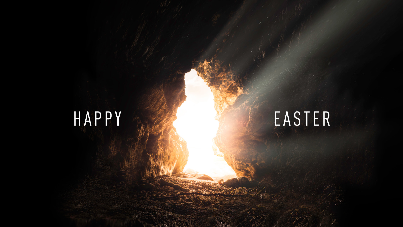 Easter Greetings from MP Kelly Block