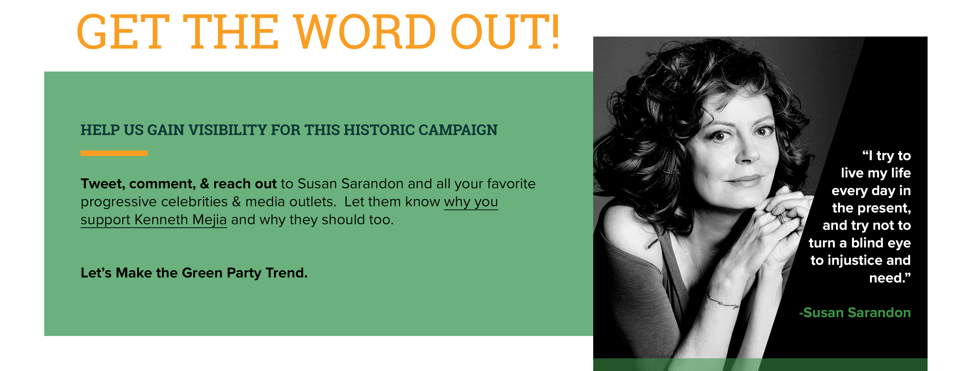 Susan Sarandon Progressive Celebrity