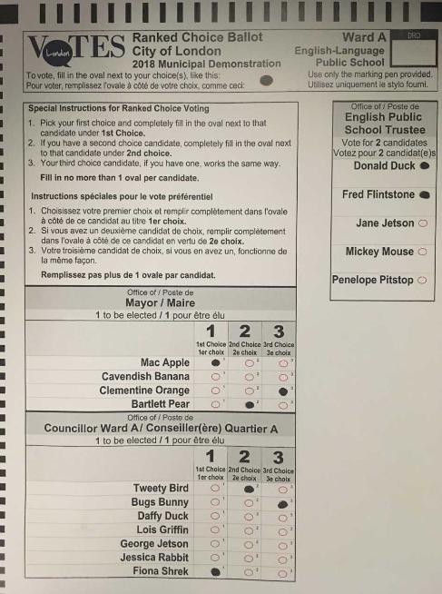 ballot1.png