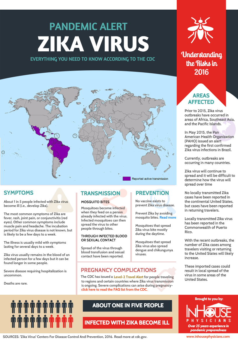Zika Virus: Understanding The Risks - Infographic Design by Straub Creative Company