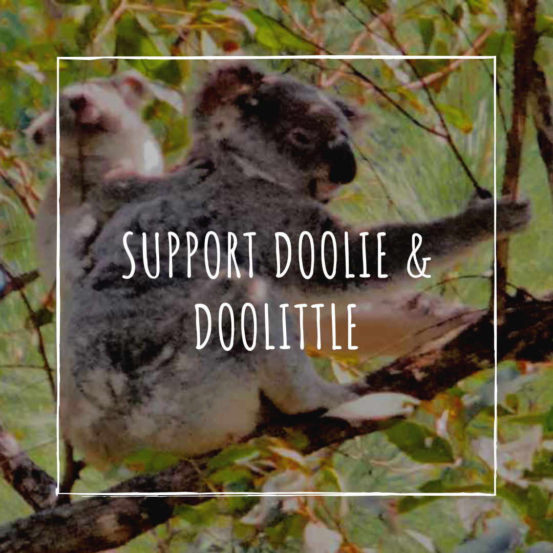 Doolie_Doolittle.png