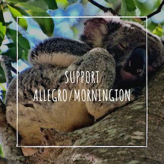 Allegro_Mornington.png