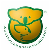 australia_koala_foundation.jpg