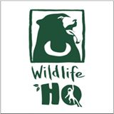 Wildlife_HQ.jpg