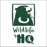 Wildlife_HQ.jpg