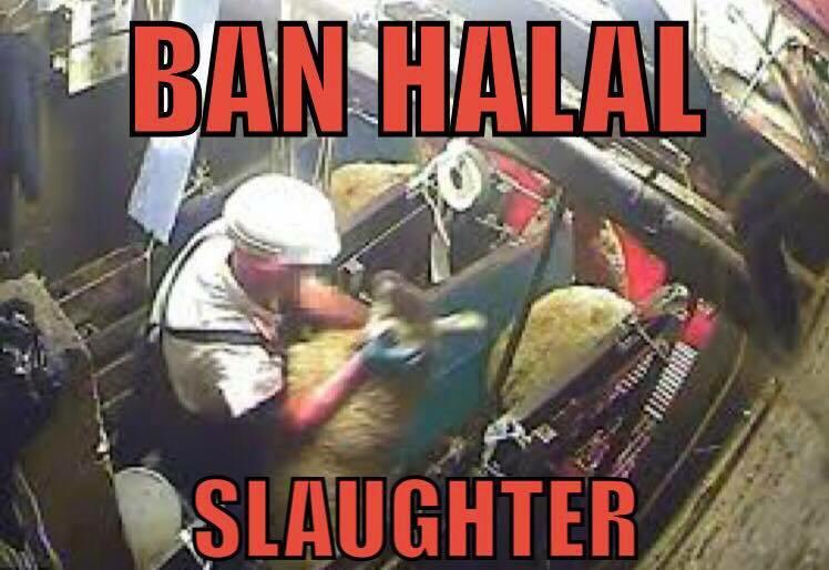 ban_halal.jpg