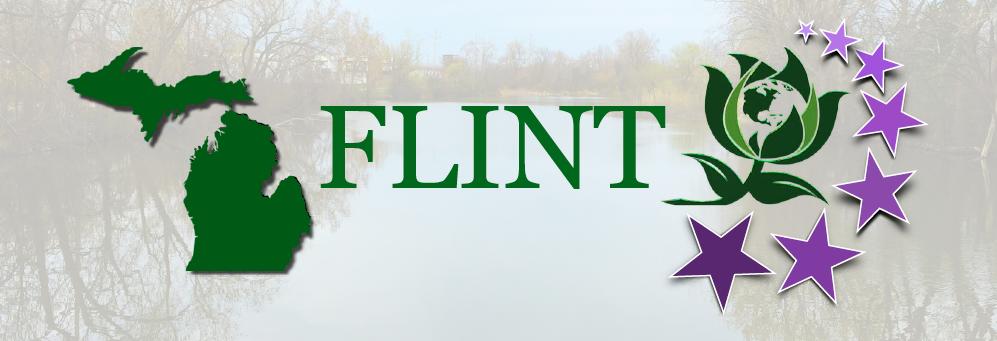 Title_Flint.png