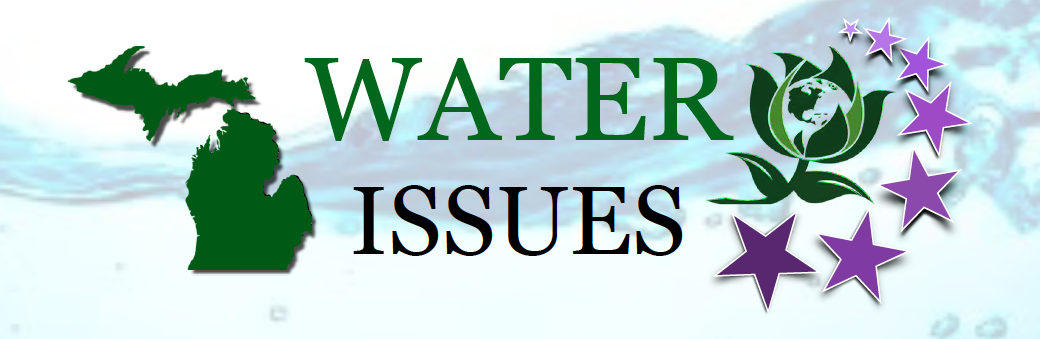 Water Issues - Jennifer V Kurland for Governor of Michigan