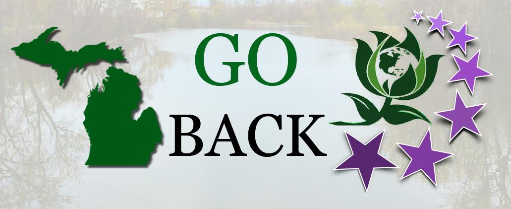 Go_Back_Flint.png
