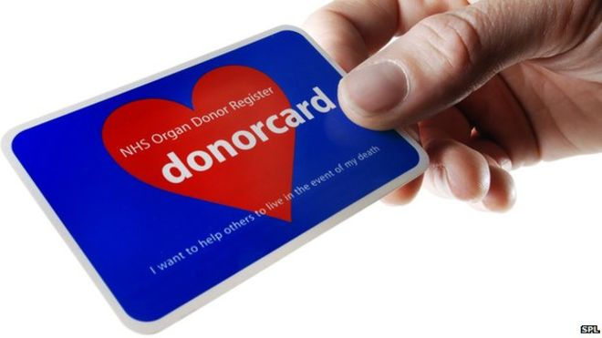 _84318830_m5800303-organ_donor_card-spl.jpg