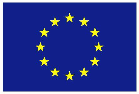euflag.jpg