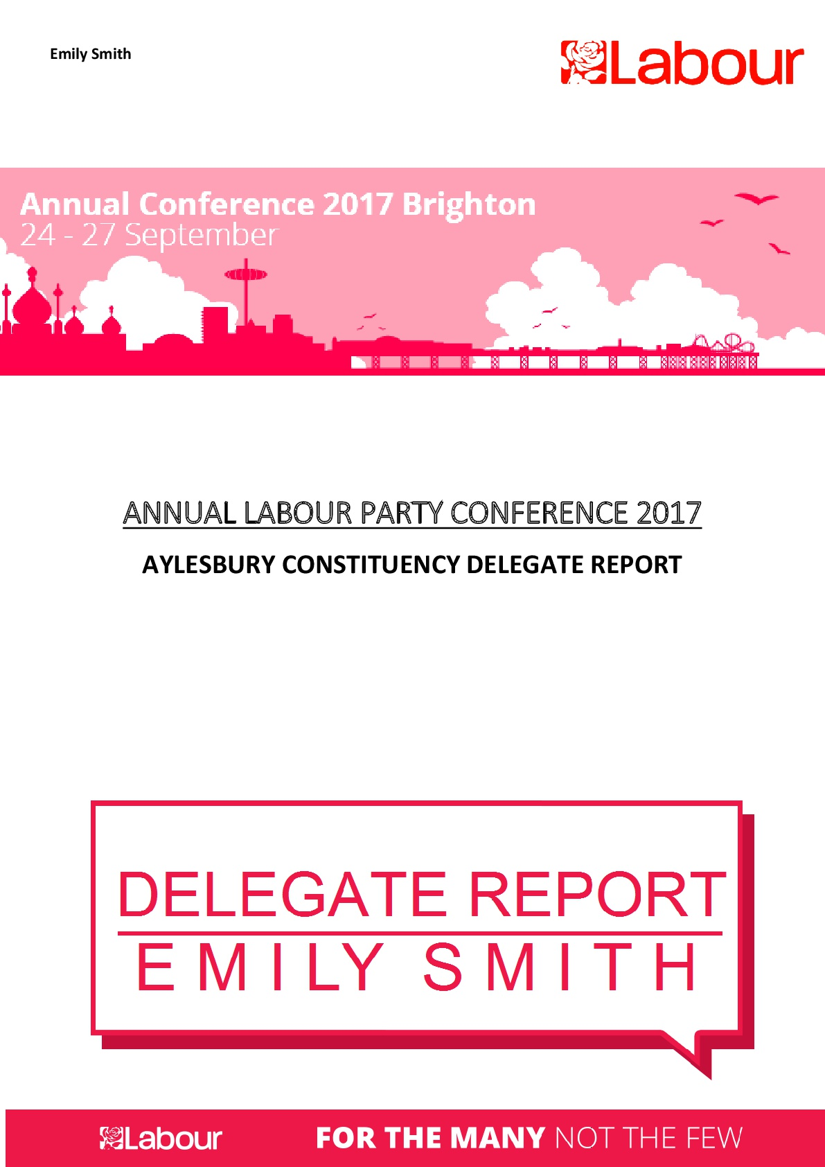Annual-Conference-Delegate-Report--001.jpg