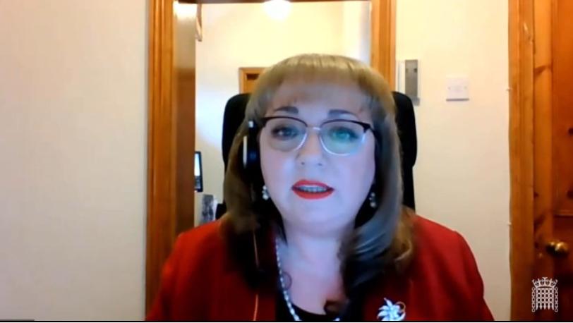 Image is of Sharon speaking virtually in the debate