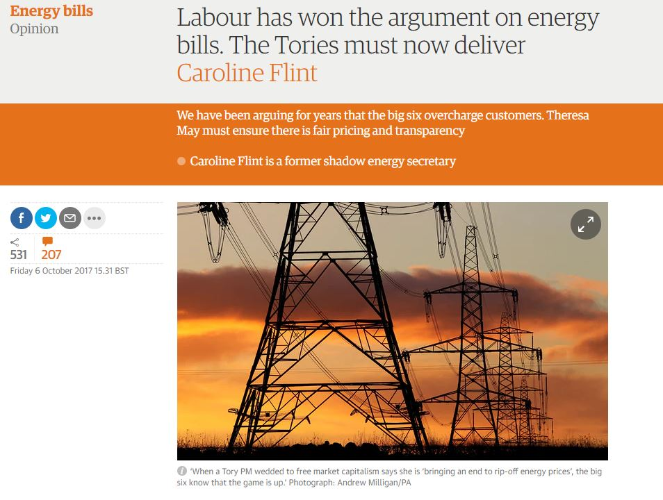 Guardian_pic_-_Flint_article_1017.JPG