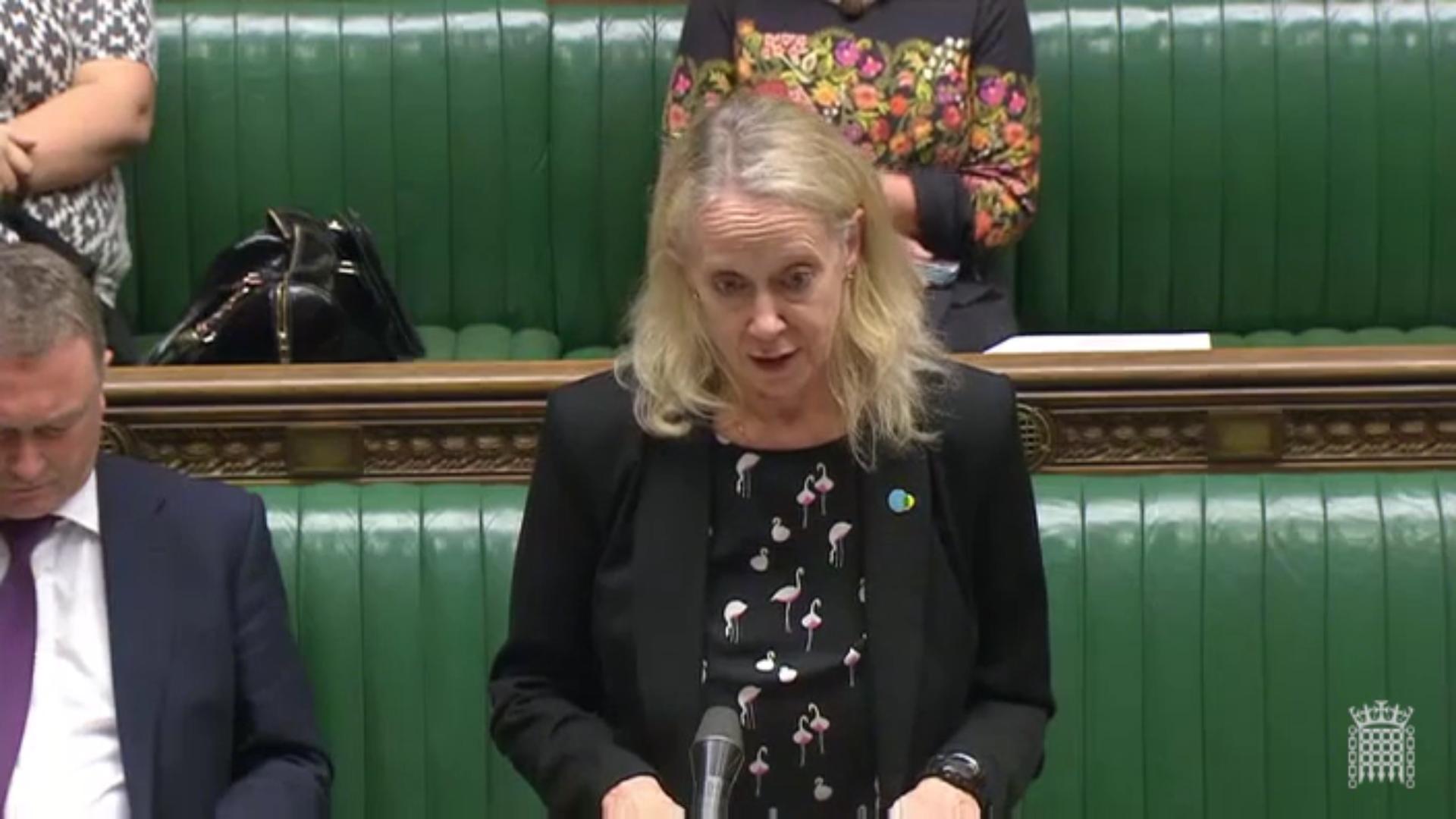 Liz_McInnes_MP_in_parliament_-_votes_at_16_debate.png