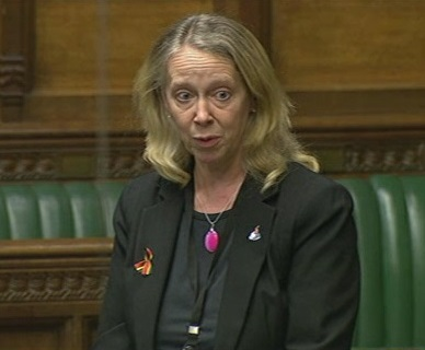 Liz_McInnes_MP_in_parliament.jpg