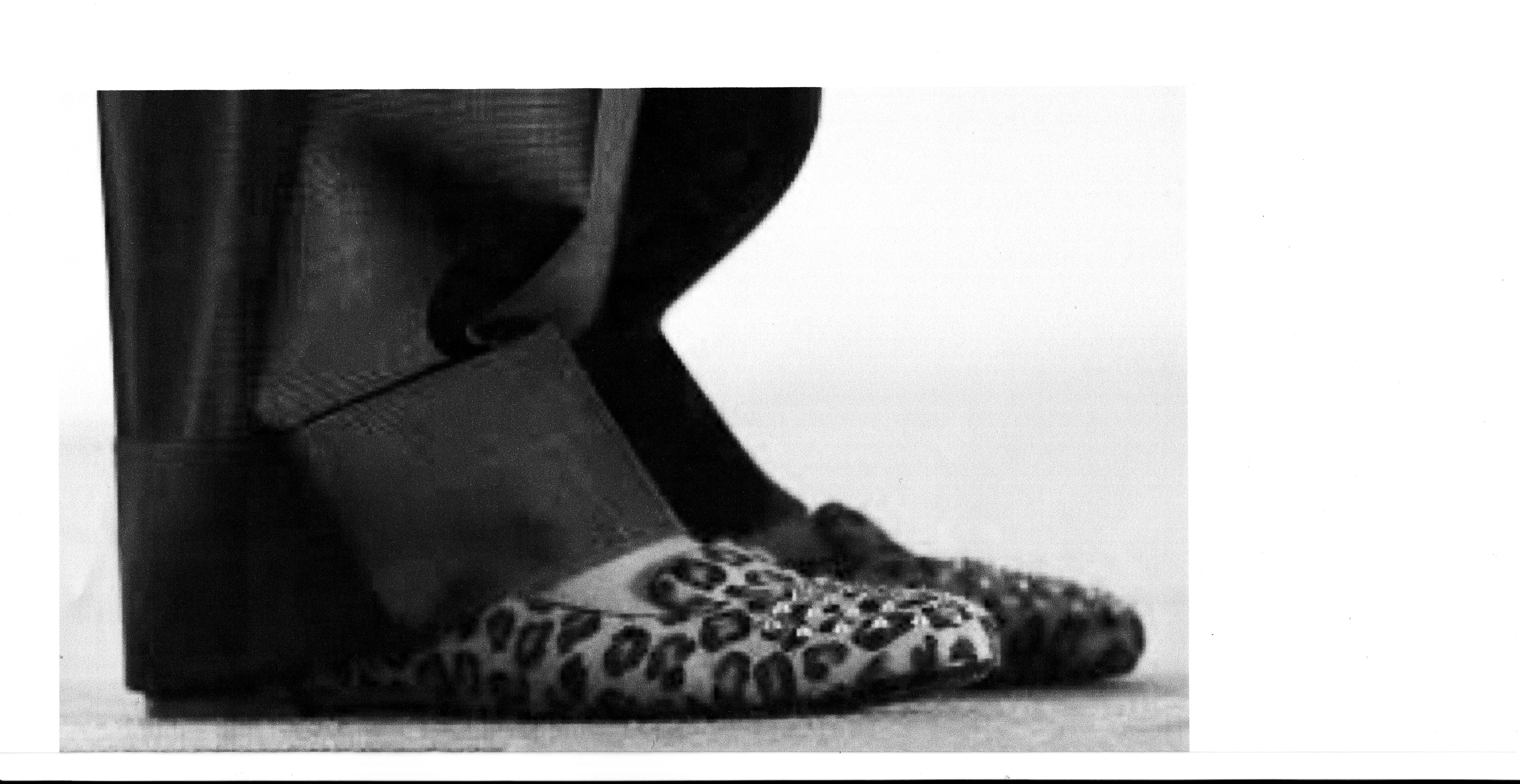 LeopardSkinShoe_160715.jpg