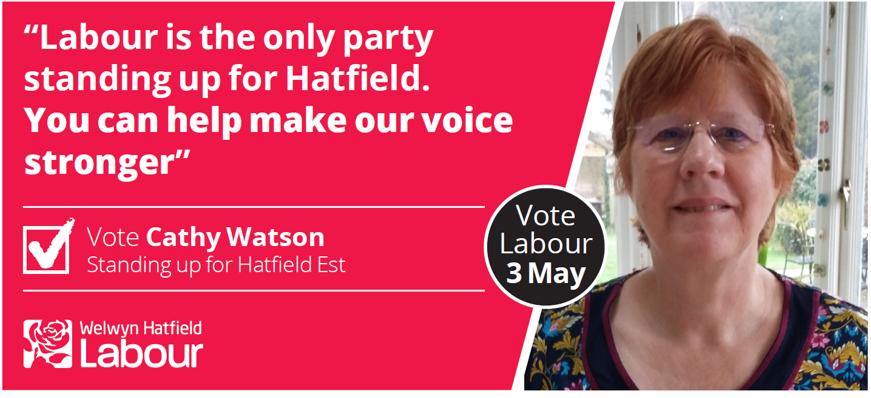 Cathy Watson for Hatfield East