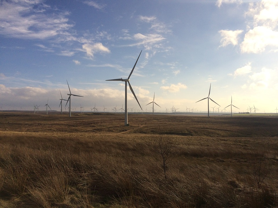 wind-farm-743517_960_720.jpg