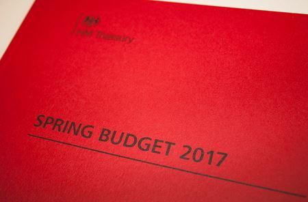 spring_budget_little_pic.JPG