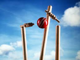 cricket_stumps.jpg